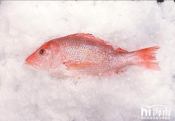 红鱼摄影图_美食图片_传统美食_餐饮美食_摄影图; 海南红鱼;; 6月13日